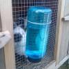 Системы содержания кроликов